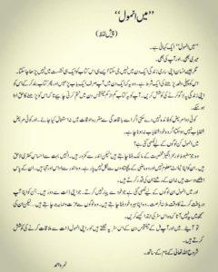 Ma Anmol By Nimra Ahmed Novel