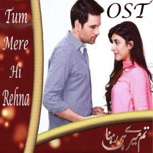 Tum meri hi rehna by Shaheen Malik Free Download