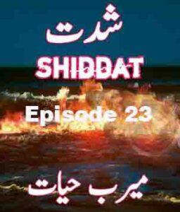 Shiddat Urdu Novel Episode 23